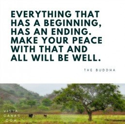 Buddha Quote | PanamaExpatInfo.com